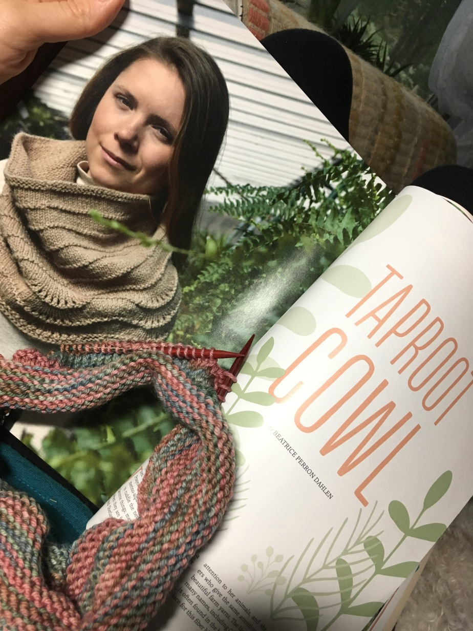 Taproot Cowl
